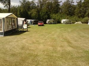 Kampeerplaats met caravans en tenten op Minicamping Veenemaat, Nederland