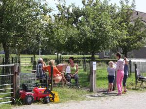 boerencamping noord-holland