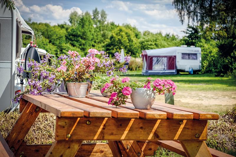 https://www.minicampingcard.eu/wp-content/uploads/2013/08/Camping-Kuiperberg-Ootmarsum-Twente-Overijssel-36-270x200.jpg