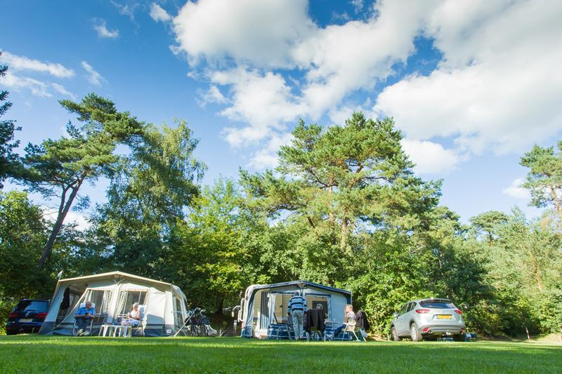 https://www.minicampingcard.eu/wp-content/uploads/2013/09/02-web-camping-De-Vossenberg-270x200.jpg