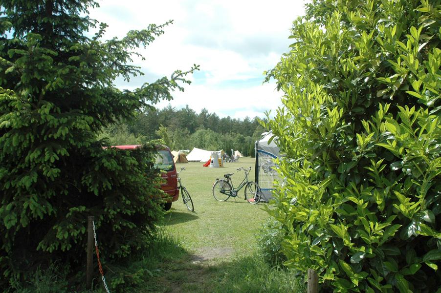https://www.minicampingcard.eu/wp-content/uploads/2013/09/bronzeneik.6-270x200.jpg