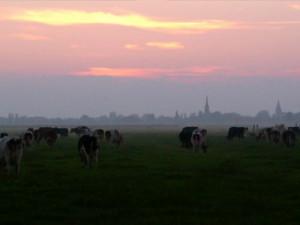 boerencamping De Rodenburghoeve