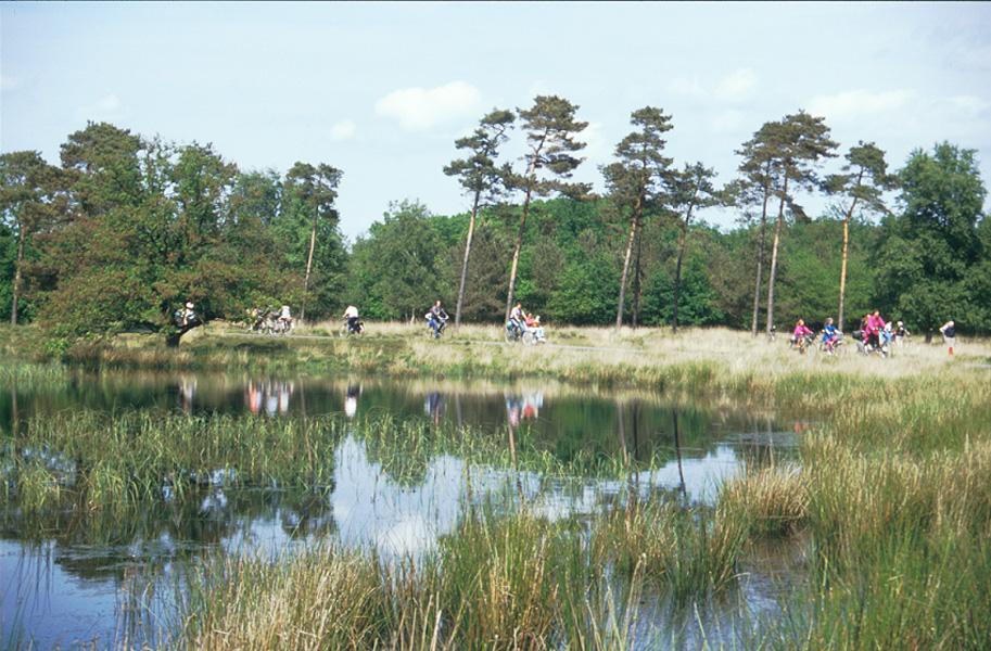 https://www.minicampingcard.eu/wp-content/uploads/2013/10/fietsen-en-wandelen-270x200.jpg
