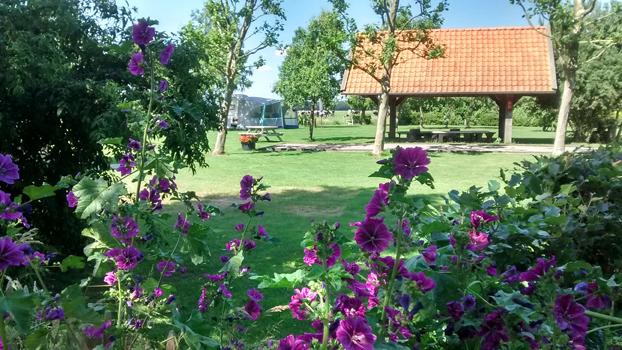 https://www.minicampingcard.eu/wp-content/uploads/2015/04/camping-vorrelveen-web-270x200.jpg