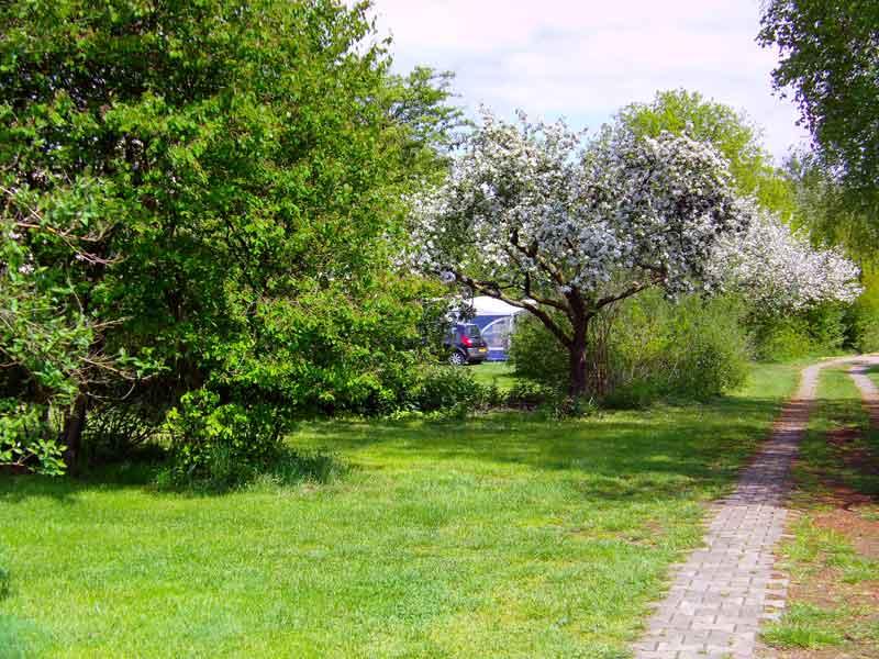 https://www.minicampingcard.eu/wp-content/uploads/2015/08/Fotos-De-Keite-023-270x200.jpg