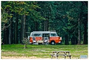 kleine camping Drenthe