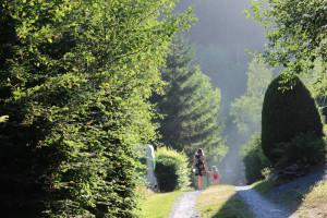 natuurcamping belgië
