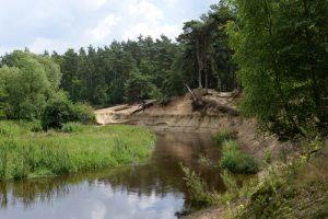 natuurcamping Overijssel