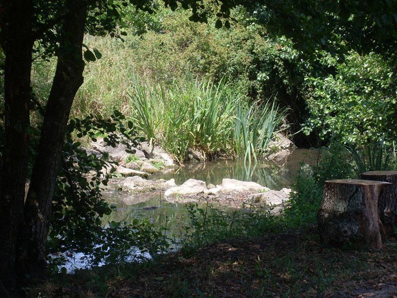 https://www.minicampingcard.eu/wp-content/uploads/2017/10/rivier2-270x200.jpg