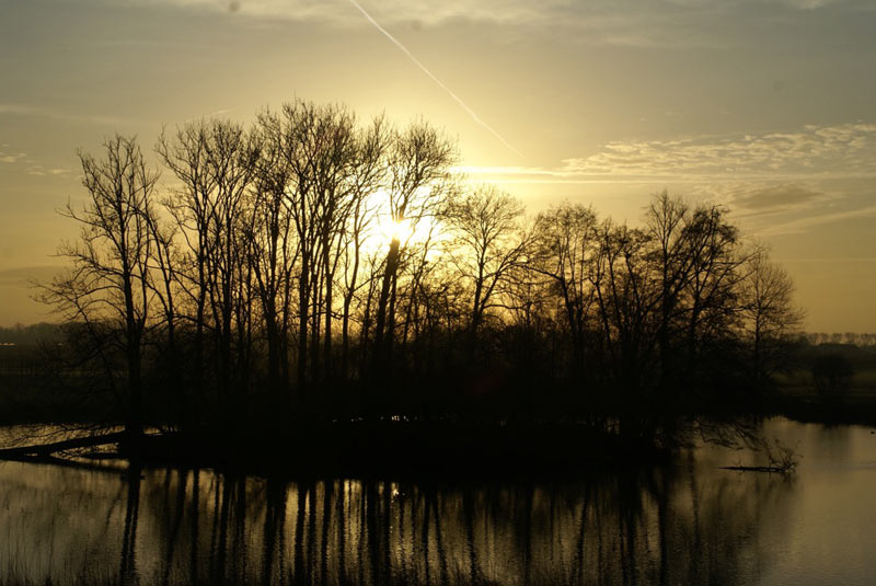 https://www.minicampingcard.eu/wp-content/uploads/2018/03/Mini-Camping-Het-Wielseveld-Betuwe-Natuur-006-270x200.jpg
