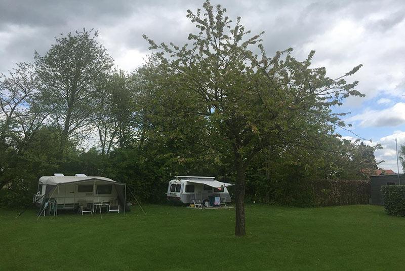https://www.minicampingcard.eu/wp-content/uploads/2018/03/Mini-Camping-Het-Wielseveld-Betuwe-Slider-008-270x200.jpg