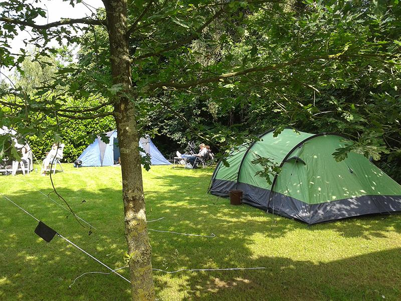 https://www.minicampingcard.eu/wp-content/uploads/2018/06/camping-haldert-9-270x200.jpg