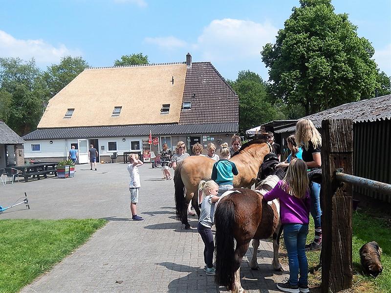 https://www.minicampingcard.eu/wp-content/uploads/2018/06/pony-270x200.jpg