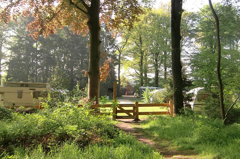 https://www.minicampingcard.eu/wp-content/uploads/2018/08/In-bosrijke-omgeving-270x200.jpg