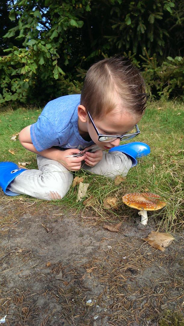 https://www.minicampingcard.eu/wp-content/uploads/2019/09/Natuurontdekken-op-Old-Putten-kind-wat-een-mooie-paddestoel-fotograaf-Mirjam-Oortwijn-2014-270x200.jpg