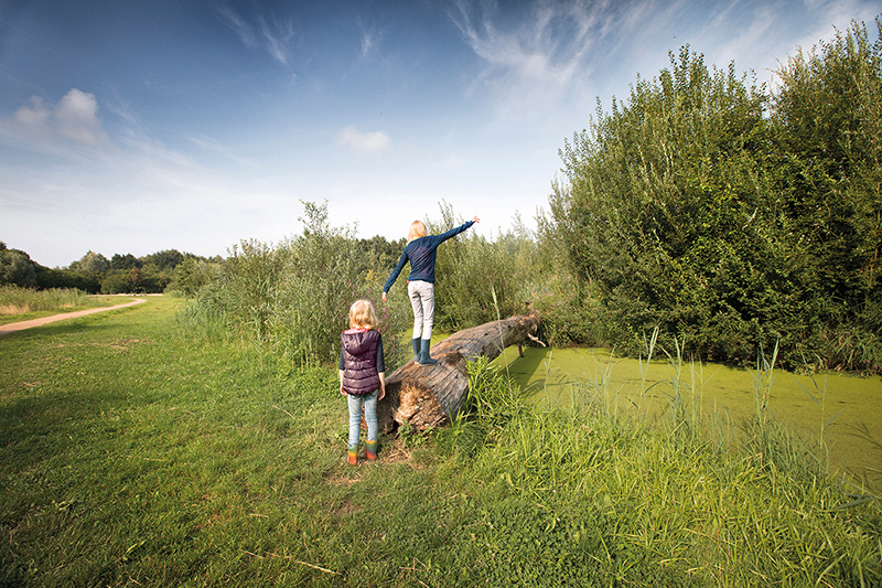 https://www.minicampingcard.eu/wp-content/uploads/2020/09/copyright-visit-flevoland-lelystad-klimmen-en-klauteren-in-bos-72-dpi-1-270x200.jpg